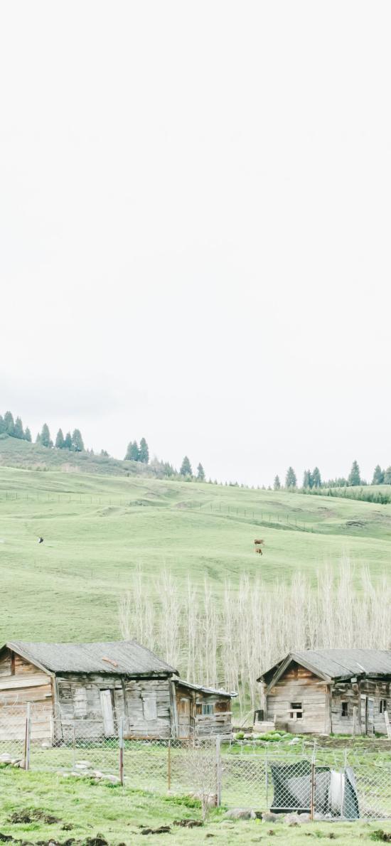 木屋 山坡 小清新 草原