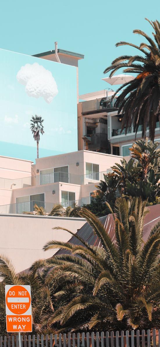 建筑 就是 设计 绿植 房屋