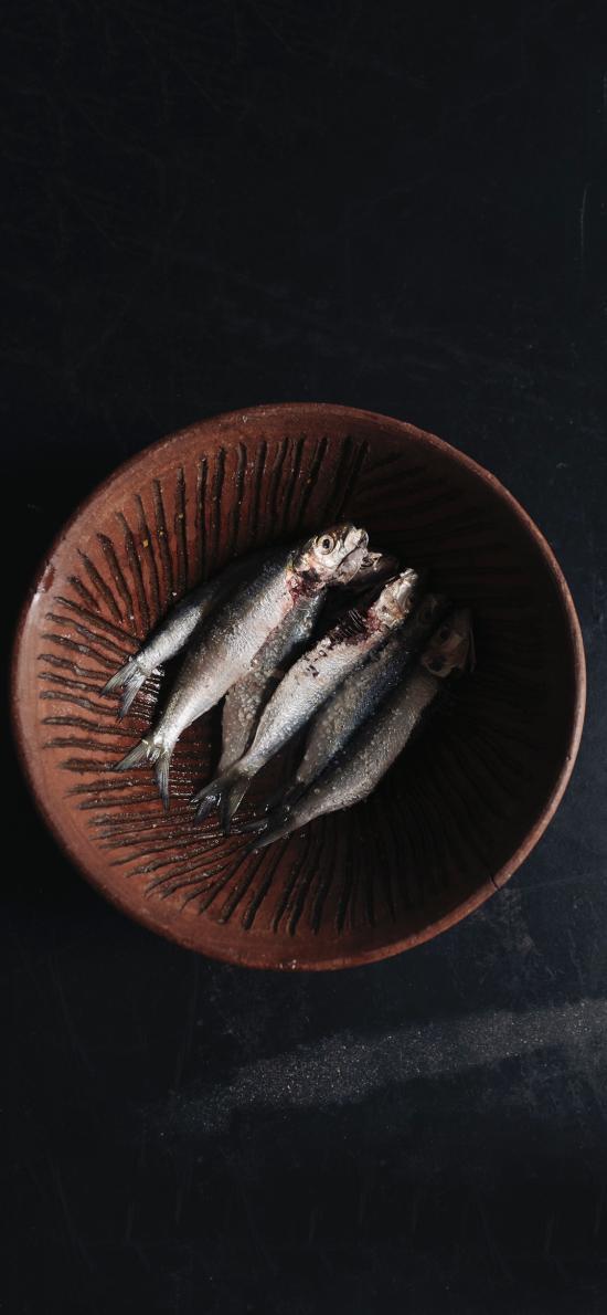 海鱼 小鱼 食材 肉类