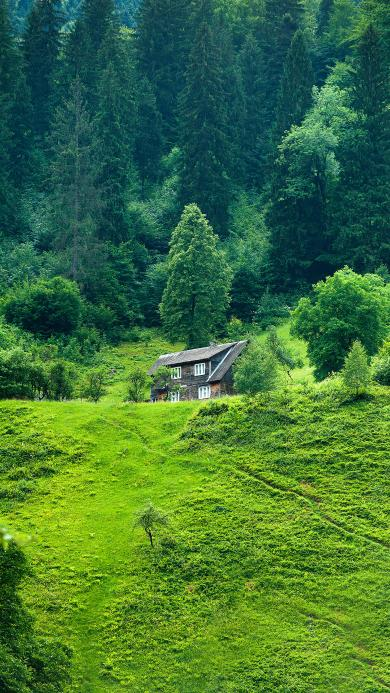 景色 山野 绿意盎然 房屋 碧绿