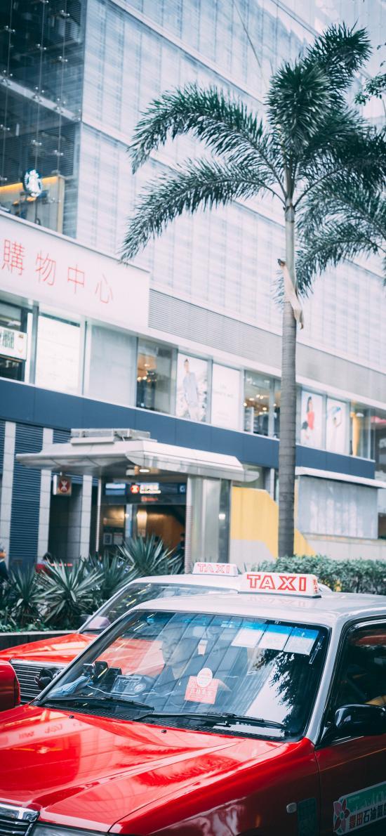 街道 的士 香港 出租车 绿植
