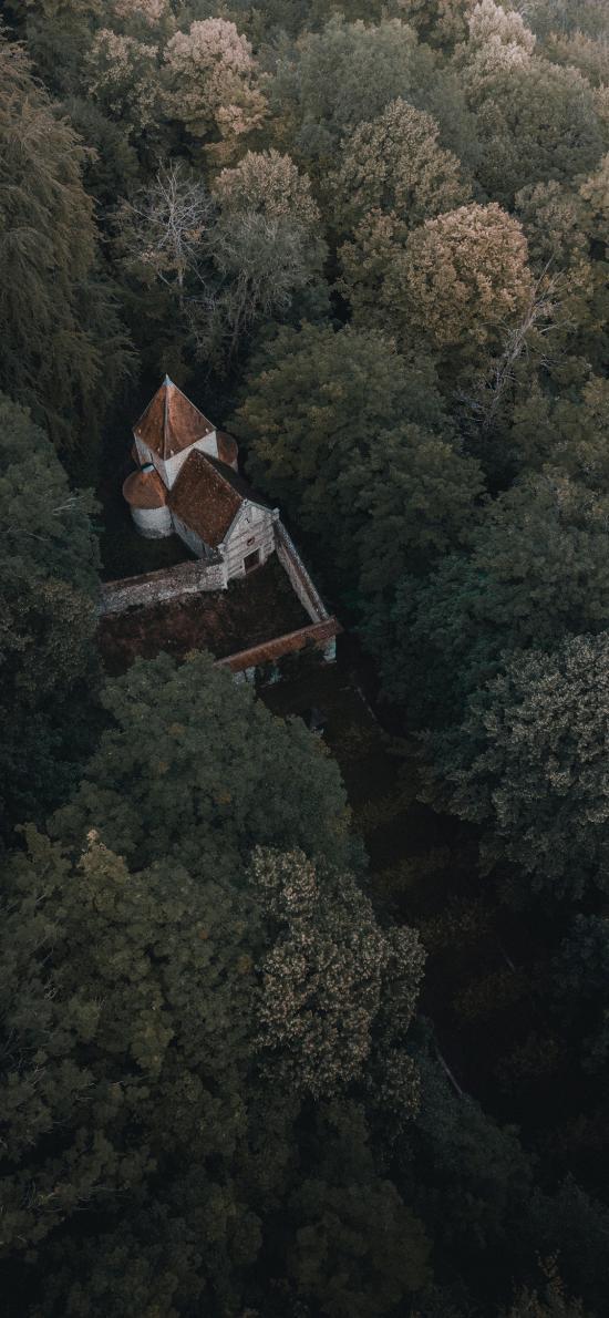 仰拍 建筑 树林 城堡