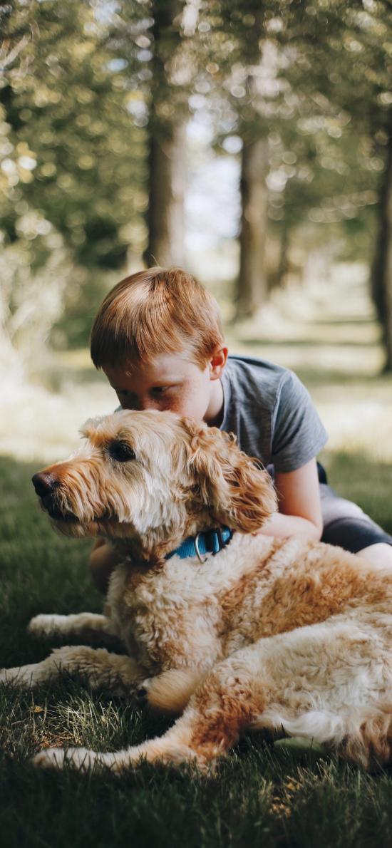 狗 犬类 宠物 草地