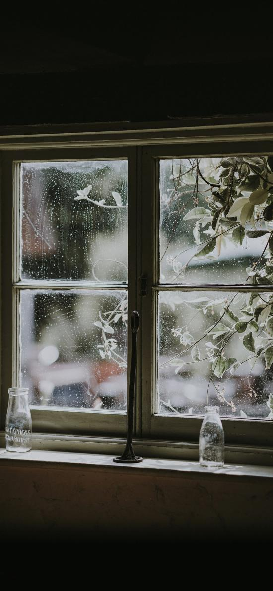 窗台 瓶罐 窗外树木 唯美意境