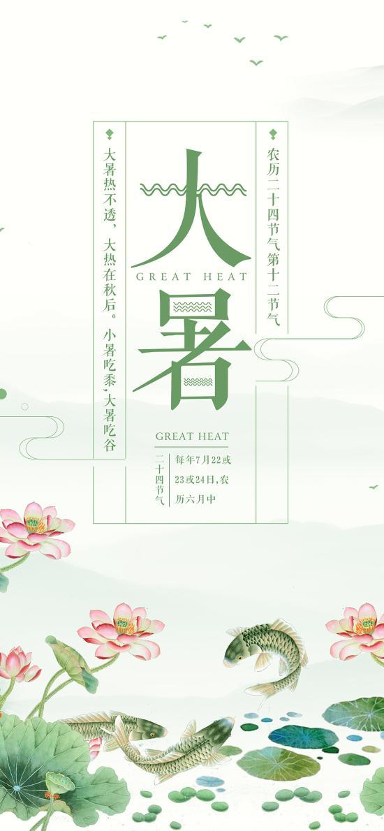 大暑 二十四节气 季节 夏天 插画 荷塘 鲤鱼