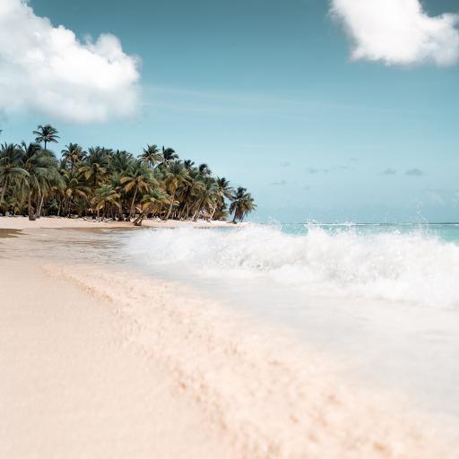 沙滩 海边 热带 海浪