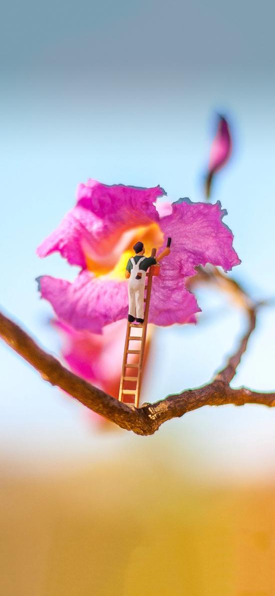 创意拍摄 鲜花 摆件 花匠