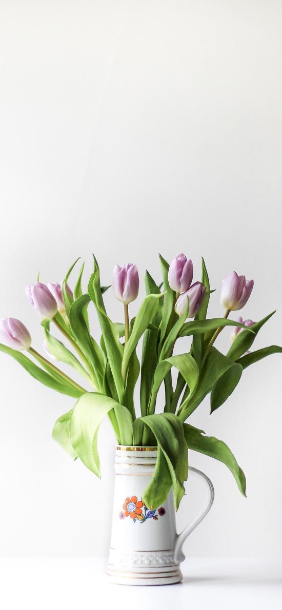鲜花 枝叶 新鲜 郁金香