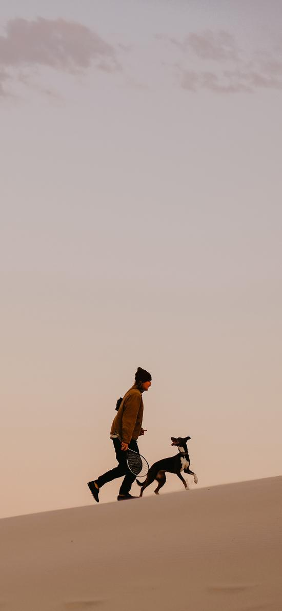 沙漠 行走 人物 狗