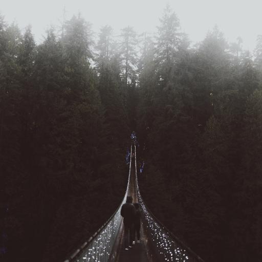 桥梁 吊桥 黑白 唯美意境