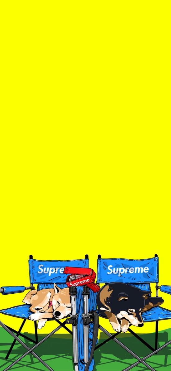 CJroblue插图 supreme 柴犬 潮图