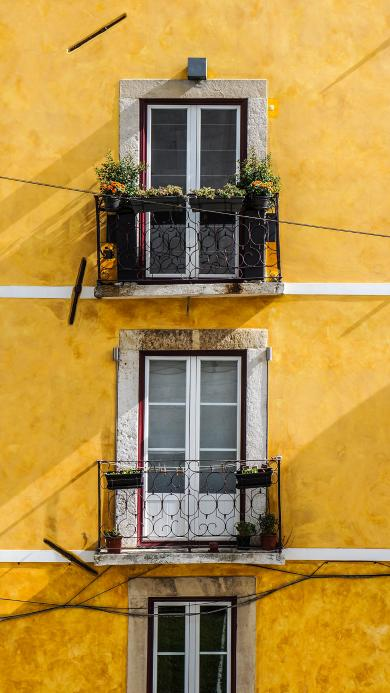 窗户 阳台 黄色 花盆
