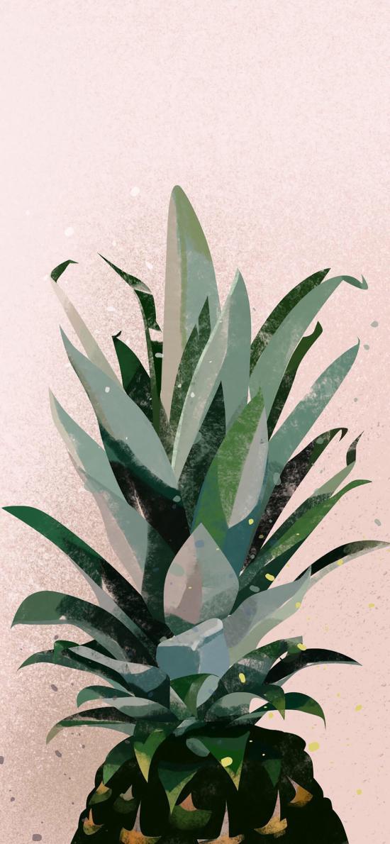 插画 菠萝 色彩 艺术