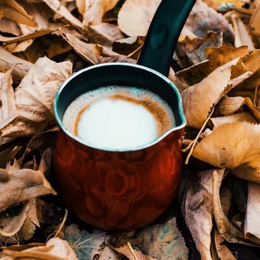 小奶锅 咖啡 落叶 枯黄