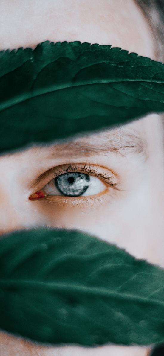 欧美 男孩 眼睛 蓝色 特写 绿叶