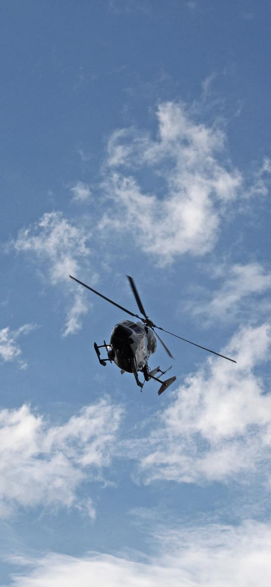 直升机 飞机 飞行 航空 天空