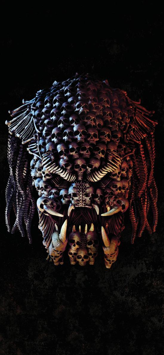 铁血战士 欧美 骷髅头 海报