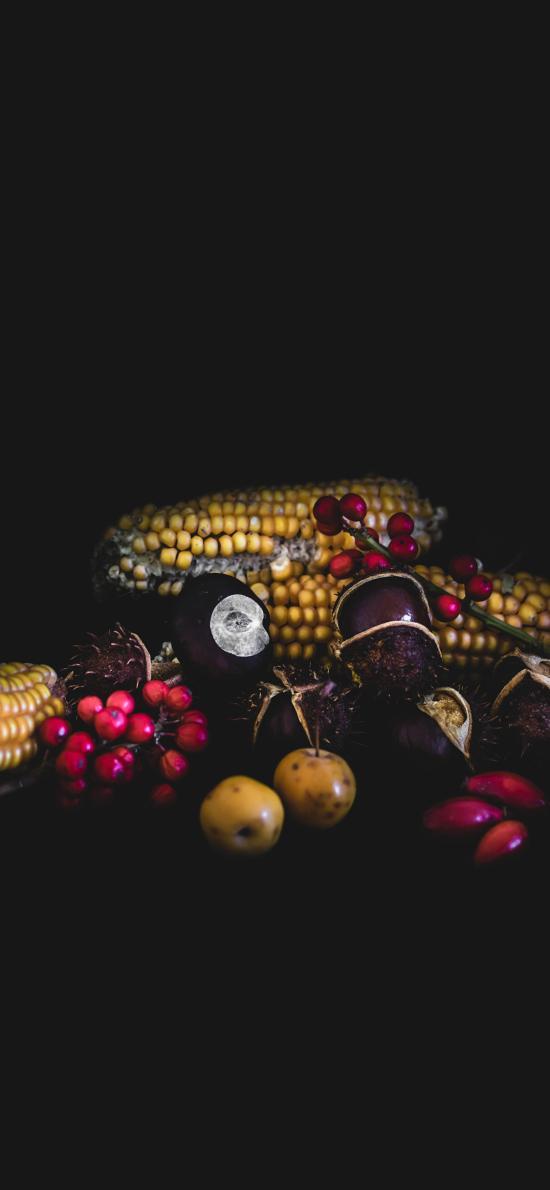 玉米 浆果 板栗 山楂 苞米
