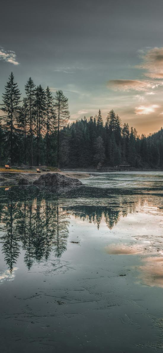 倒映 景色 湖水 对称 枯枝