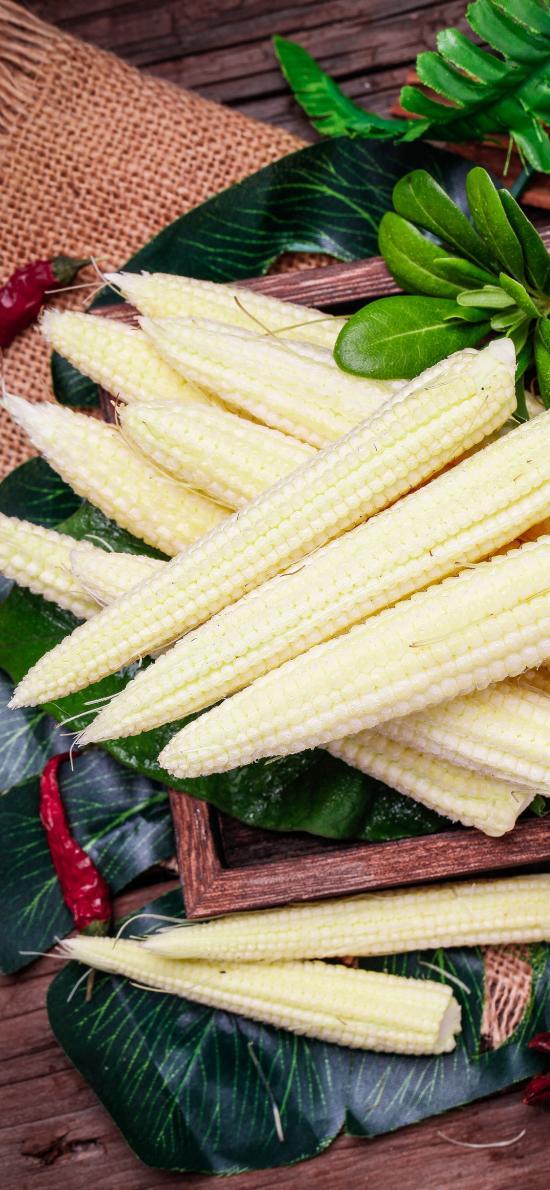 玉米笋 食材 蔬菜 嫩白