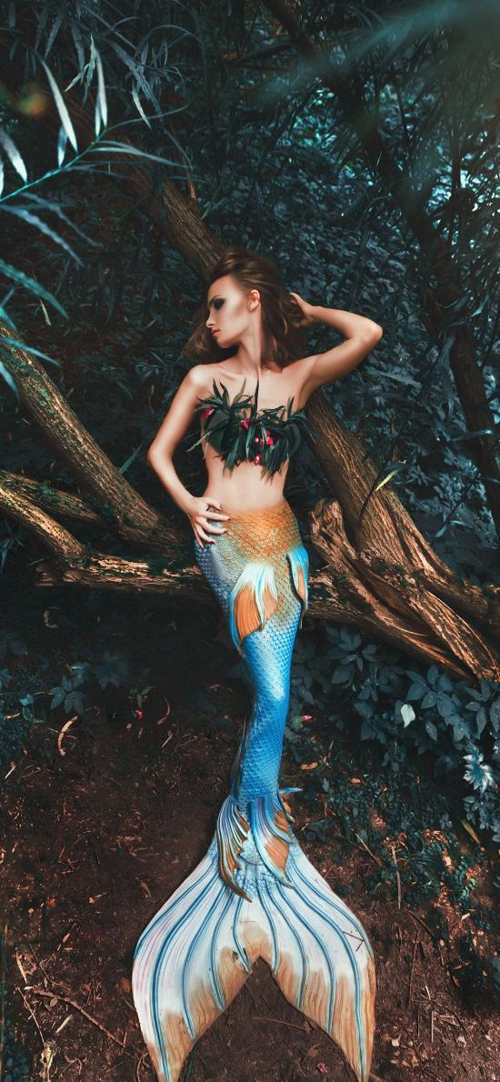 伪装 美人鱼 树林 造型