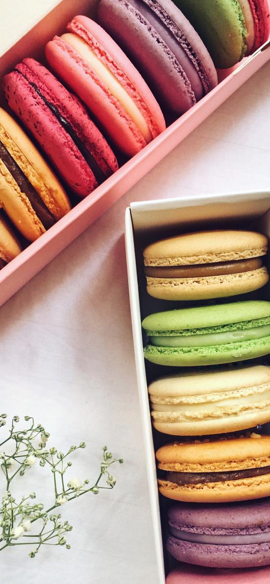 马卡龙 色彩 精致 甜品 点心 糕点