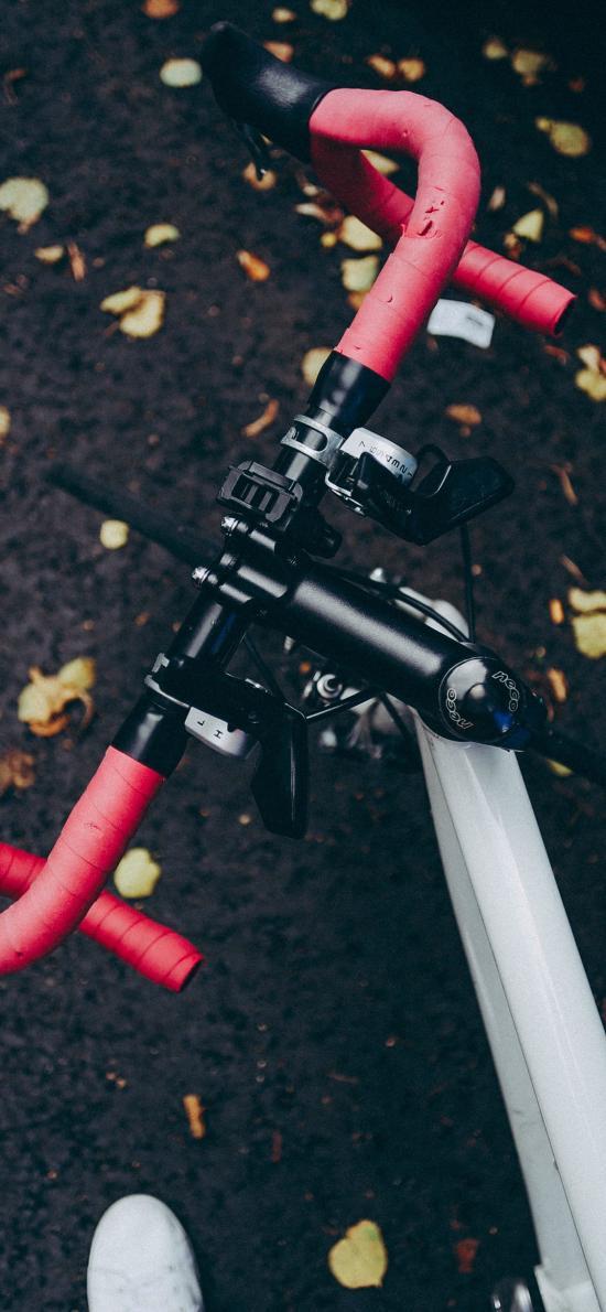 自行车 骑行 单车 运动