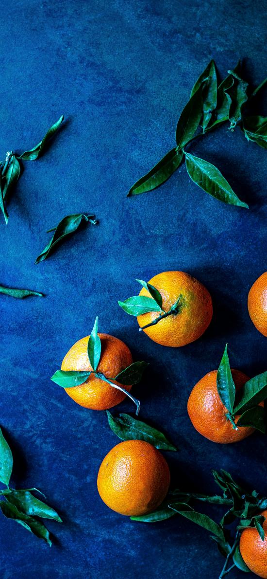 橘子 柑橘 水果 枝叶 新鲜