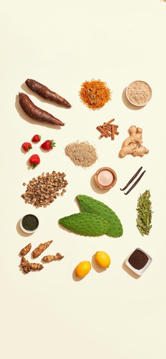 食材 仙人掌 香料 水果