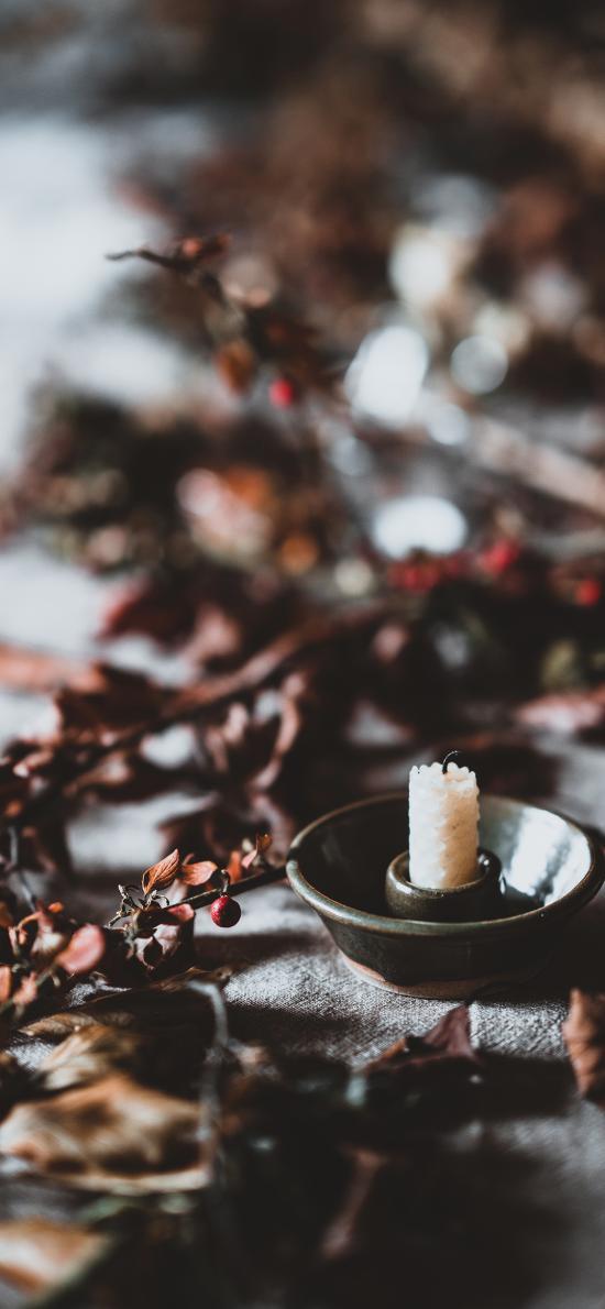 蜡烛 浆果 枯黄 白烛