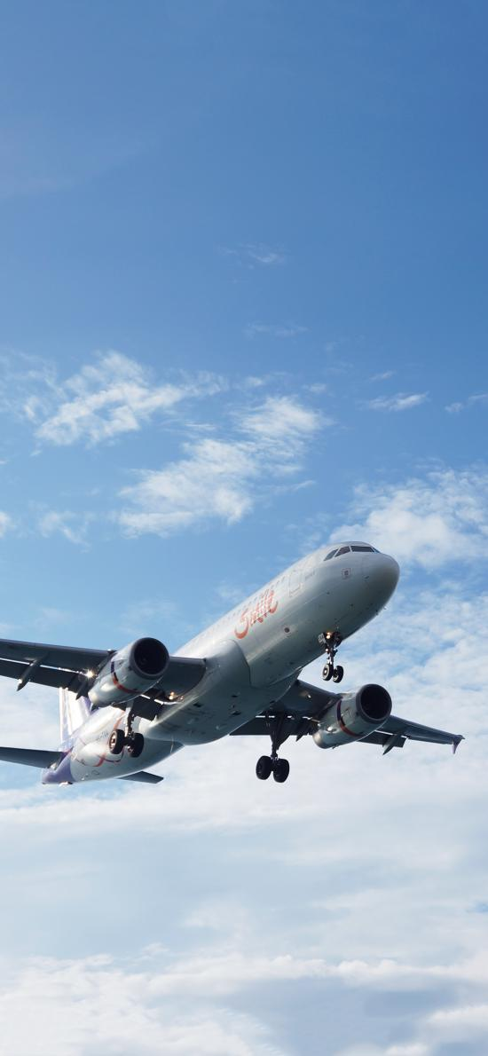 飞机 飞行 航空 客机