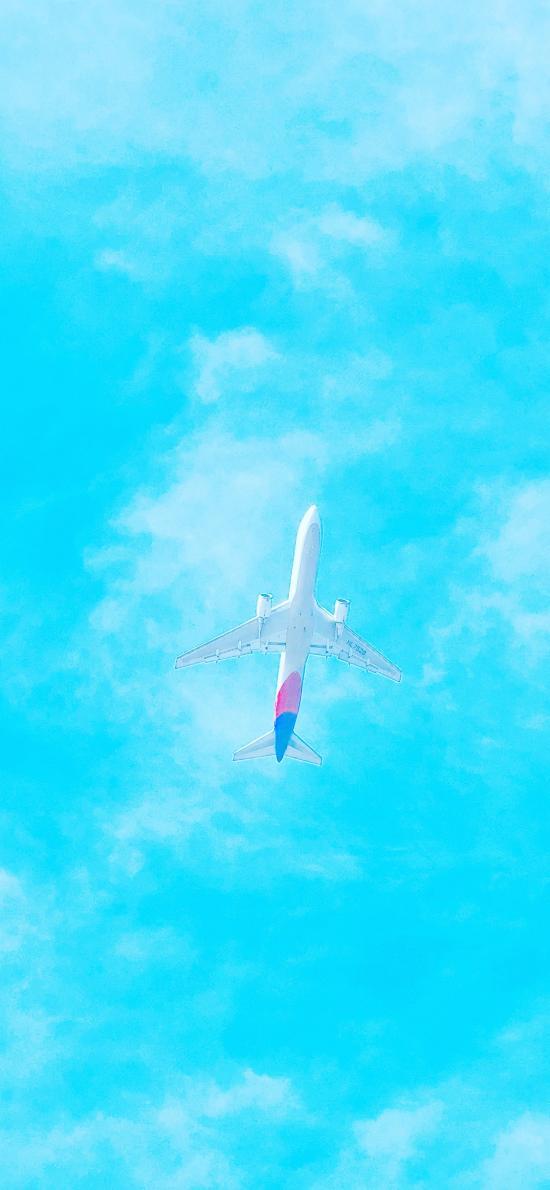 飞机 蓝天 白云 航空 客机