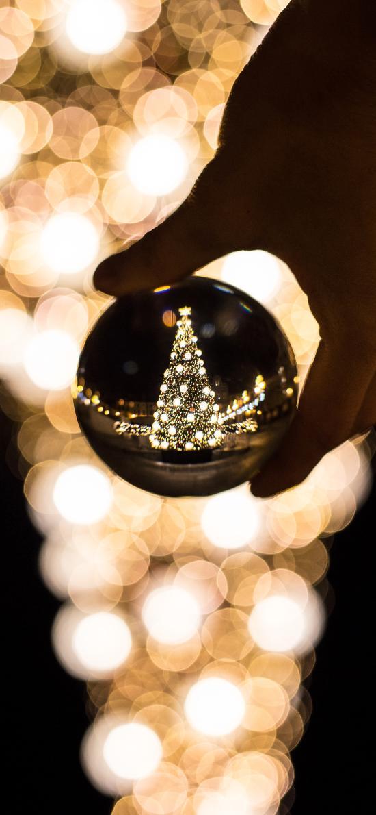 水晶球 倒映 圣诞树 圣诞节