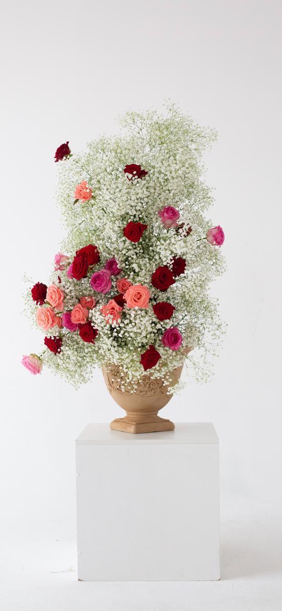 花束 满天星 玫瑰 插画