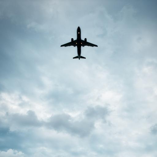 飞机 航空 天空 大海