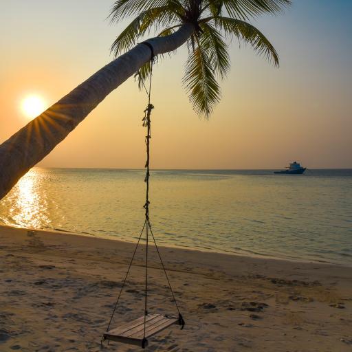 椰树 日落 秋千 大海 海边