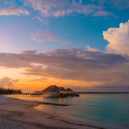 海景 大海 海岸 日落