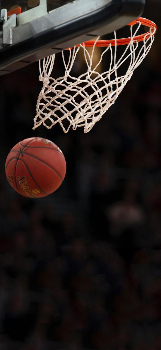 球场 球框 篮球 进球