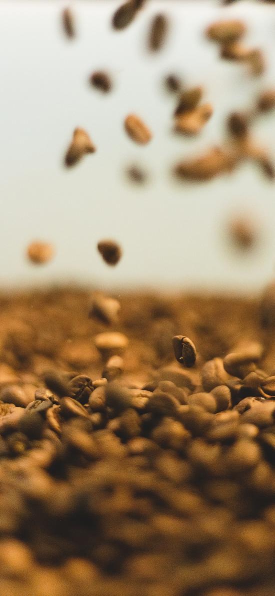 咖啡豆 颗粒 食材 散落