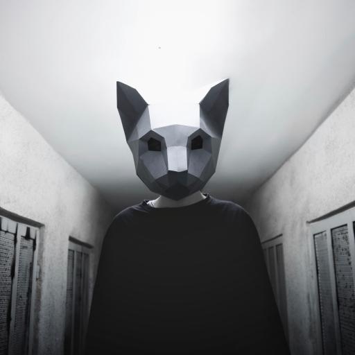 写真 人物 头套 黑白 创意 神秘