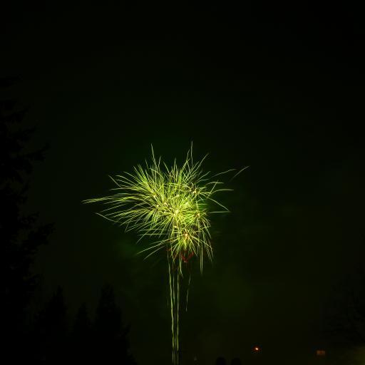 烟花 盛开 绽放 夜晚 天空