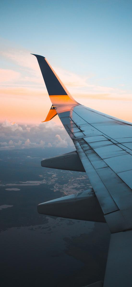 机翼 高空 客机 飞行