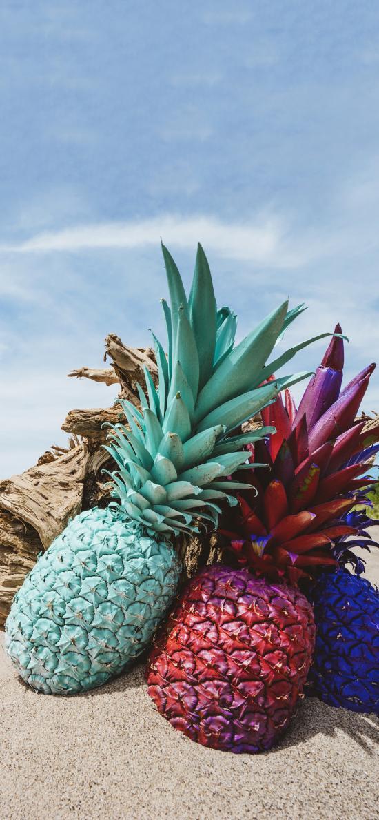 沙滩 树桩 菠萝 热带水果 喷漆 装饰