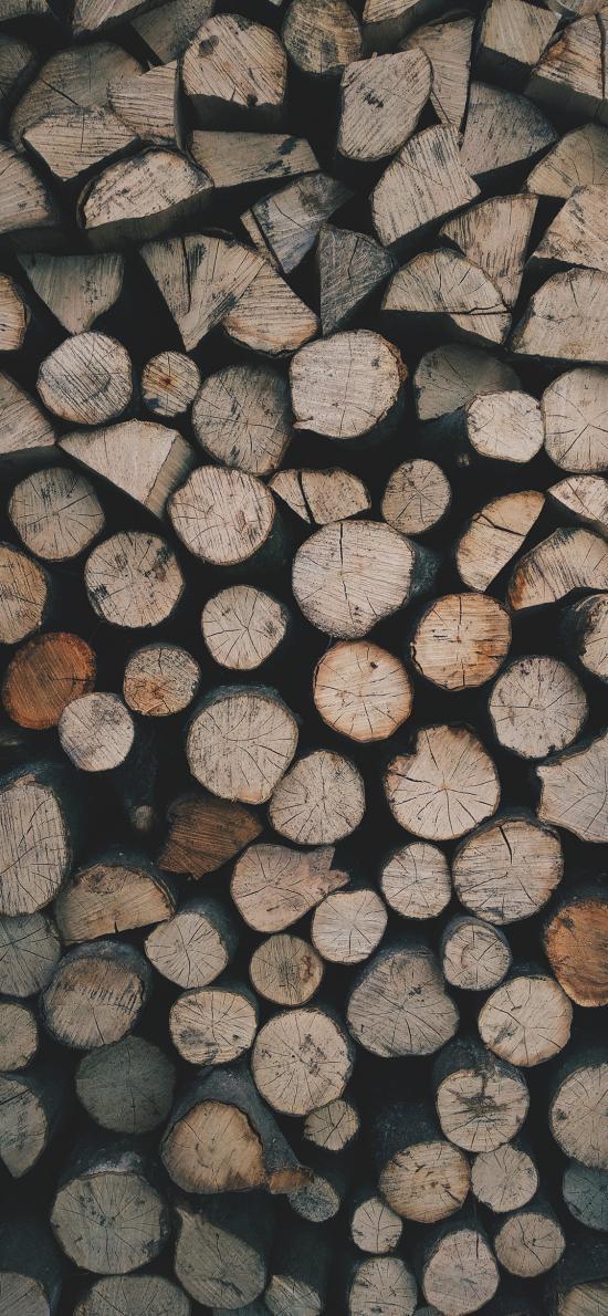 木柴 树木 切割 砍伐