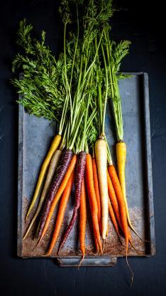 食材 胡萝卜 新鲜 营养