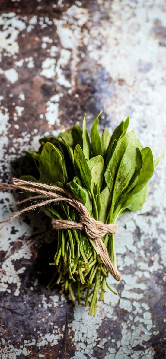 食材 蔬菜 时蔬 菠菜