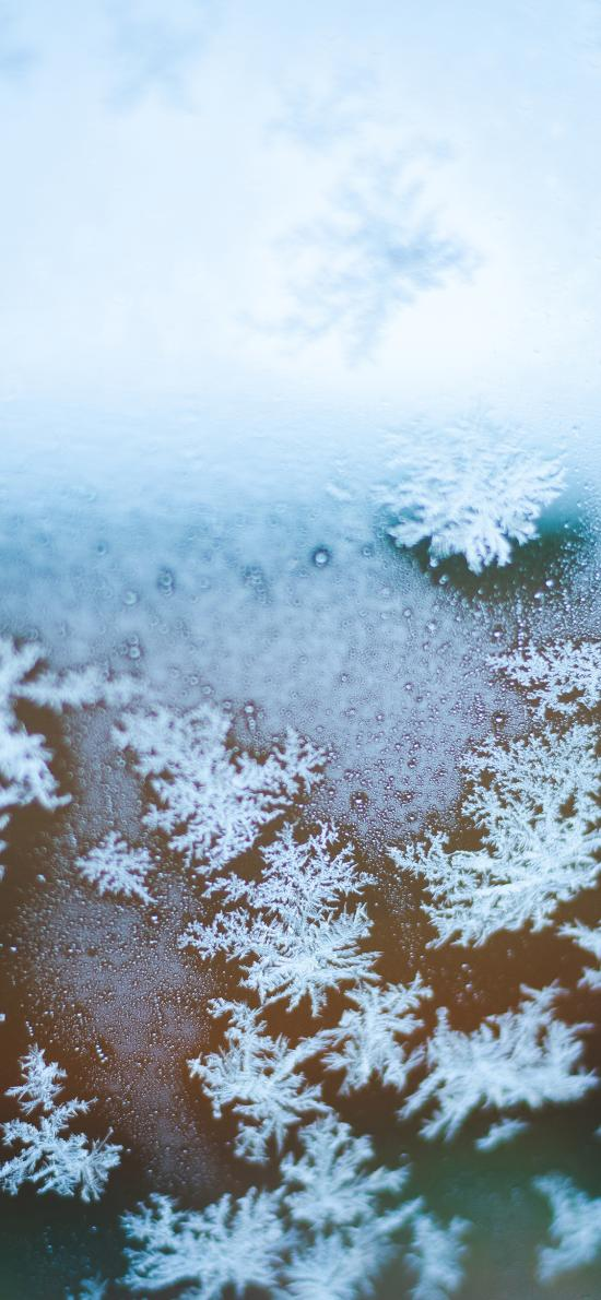 冬季 雪花 晶莹 寒冷