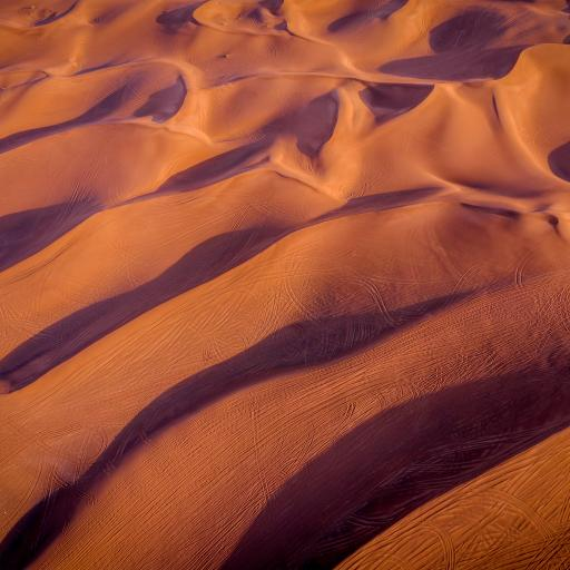 沙漠 影子 曲线 痕迹