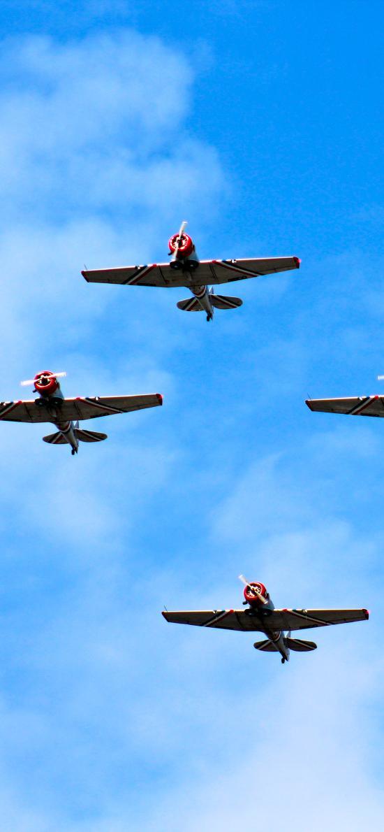 飞机 排列 蓝色 航空 飞行