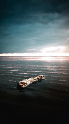 大海 木头 树桩 漂浮